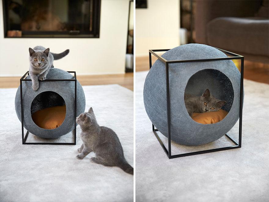 cat-cocoon-meyou-sanchez-gadenne-18